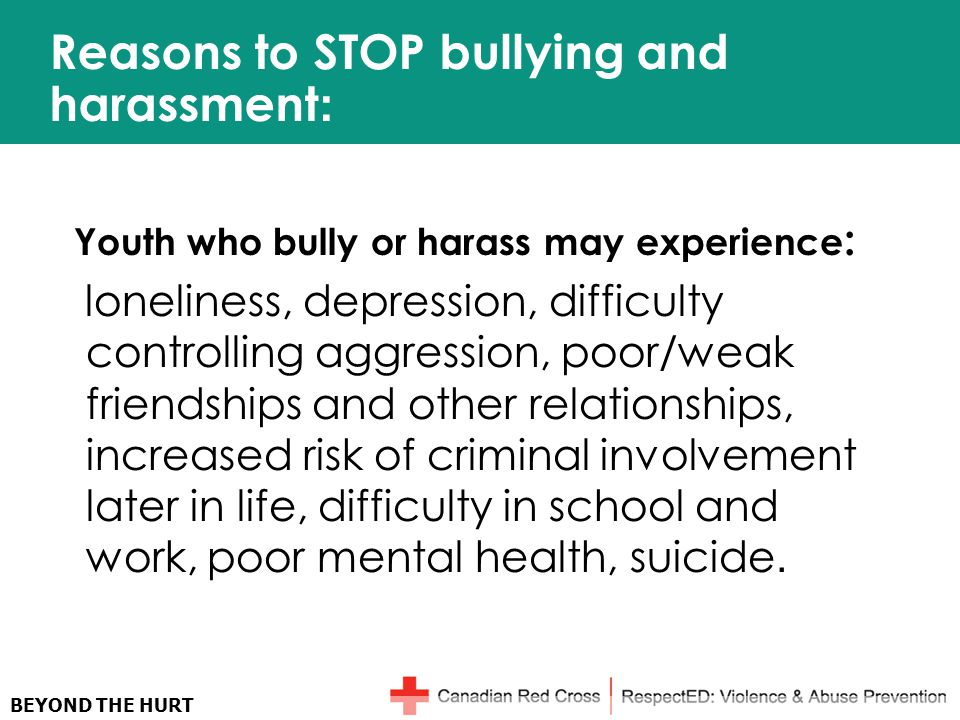 BEYOND THE HURT Reasons to STOP bullying and harassment : Youth who bully or harass may experience : loneliness, depression, difficulty controlling aggression, poor/weak friendships and other relationships, increased risk of criminal involvement later in life, difficulty in school and work, poor mental health, suicide.