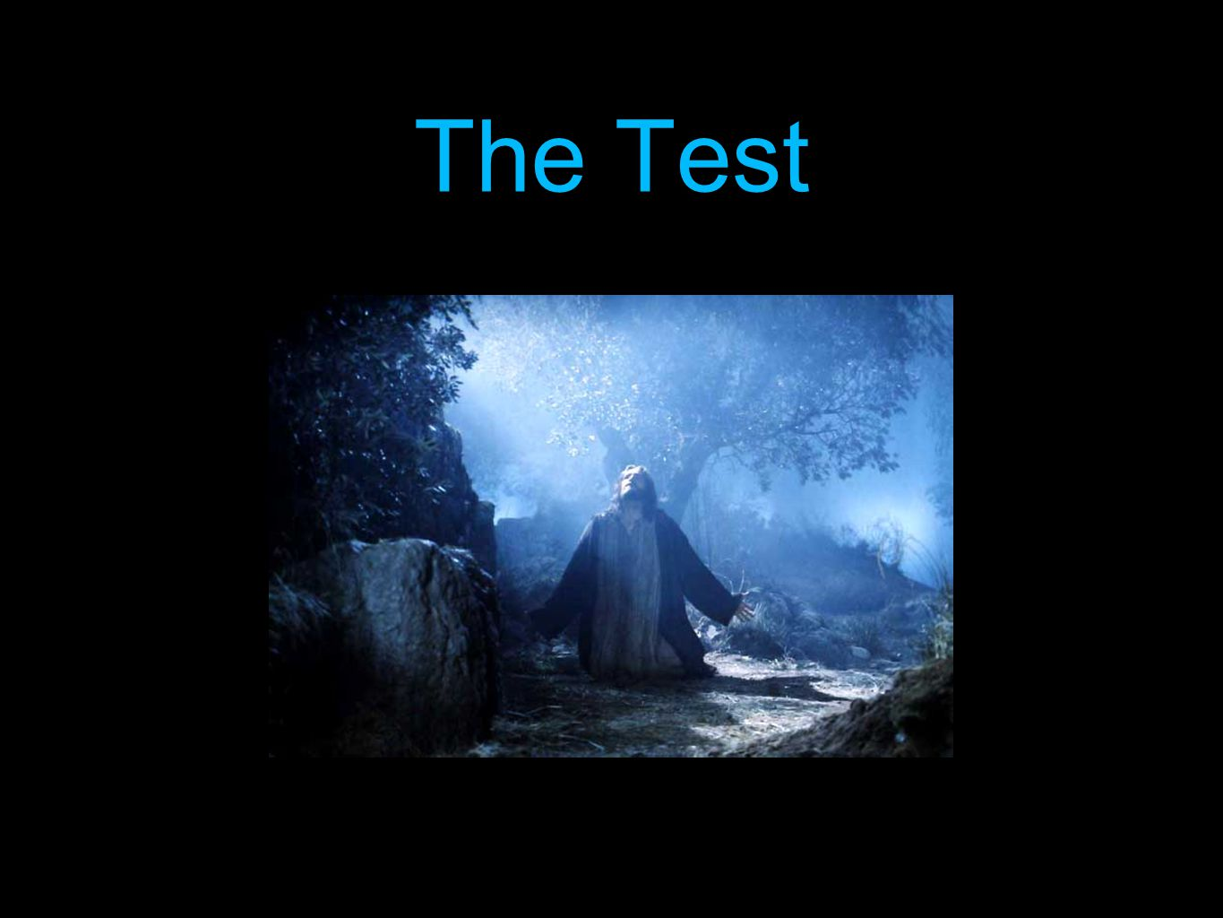 WISDOM.VERSUS.FAITH_ JEFF.IN V-3 N-17 SUNDAY_ 62-0401 65-6 Then if Jesus defeated Satan upon the faith, knowing Who He was--He was a predestinated creature (are you ready?) what about the predestinated Bride of Jesus Christ now.