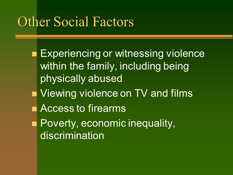 Other Social Factors n Experiencing or witnessing violence within the family, including being physically abused n Viewing violence on TV and films n Access to firearms n Poverty, economic inequality, discrimination