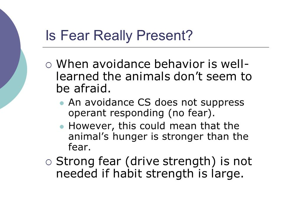 Is Fear Really Present.