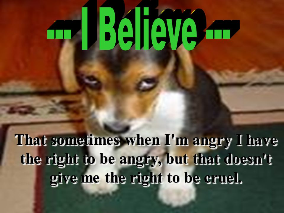 That sometimes when I m angry I have the right to be angry, but that doesn t give me the right to be cruel.