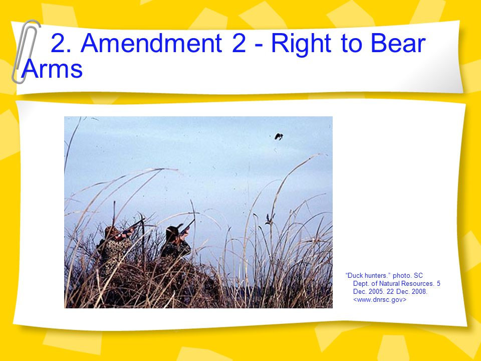 2.Amendment 2 - Right to Bear Arms Duck hunters. photo.