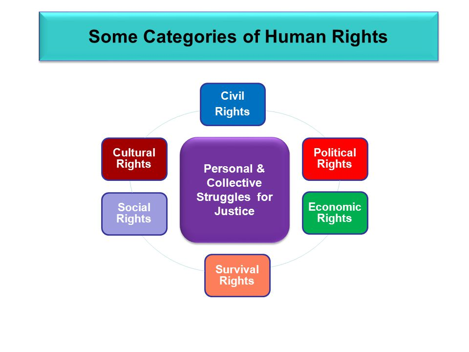 Some Categories of Human Rights Civil Rights Political Rights Economic Rights Survival Rights Social Rights Cultural Rights Personal & Collective Struggles for Justice