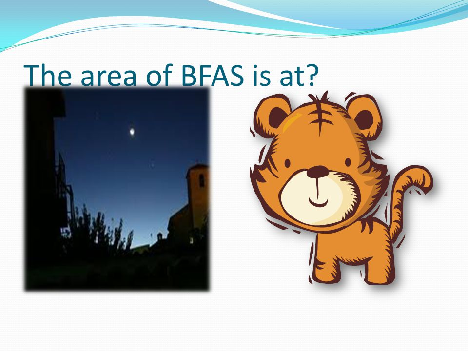 The area of BFAS is at?