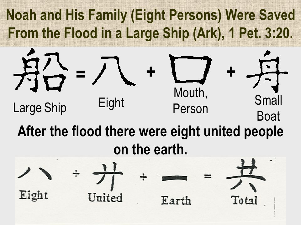 Noah and His Family (Eight Persons) Were Saved From the Flood in a Large Ship (Ark), 1 Pet.