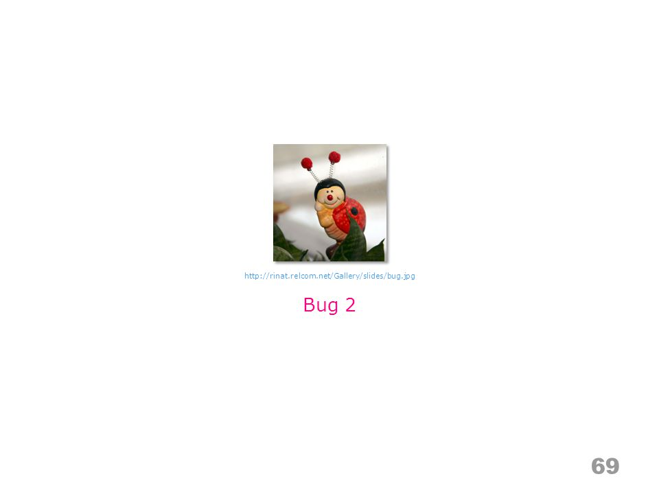 69 Bug 2 http://rinat.relcom.net/Gallery/slides/bug.jpg