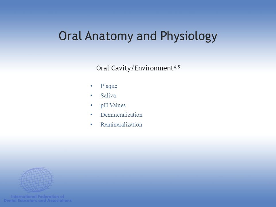 Plaque Saliva pH Values Demineralization Remineralization Oral Cavity/Environment 4,5 Oral Anatomy and Physiology