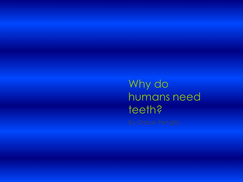 Why do humans need teeth? By Grace Pengilly