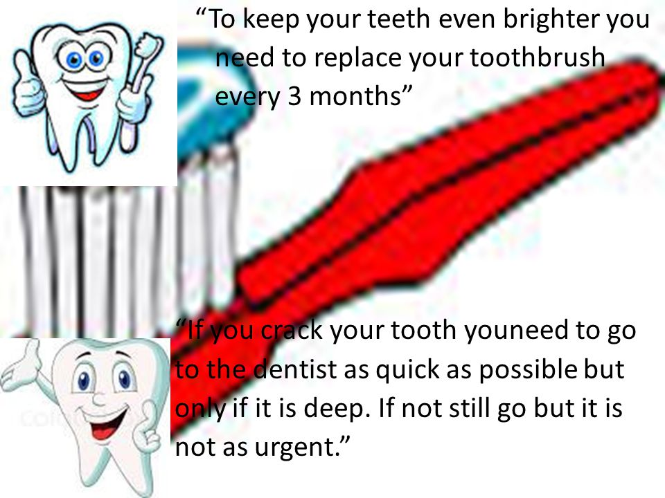 To keep your teeth even brighter you need to replace your toothbrush every 3 months If you crack your tooth youneed to go to the dentist as quick as possible but only if it is deep.