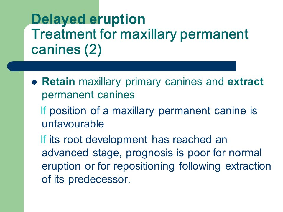 Delayed eruption Treatment for maxillary permanent canines (1) Extract maxillary primary canines and surgically expose crowns of permanent canines in