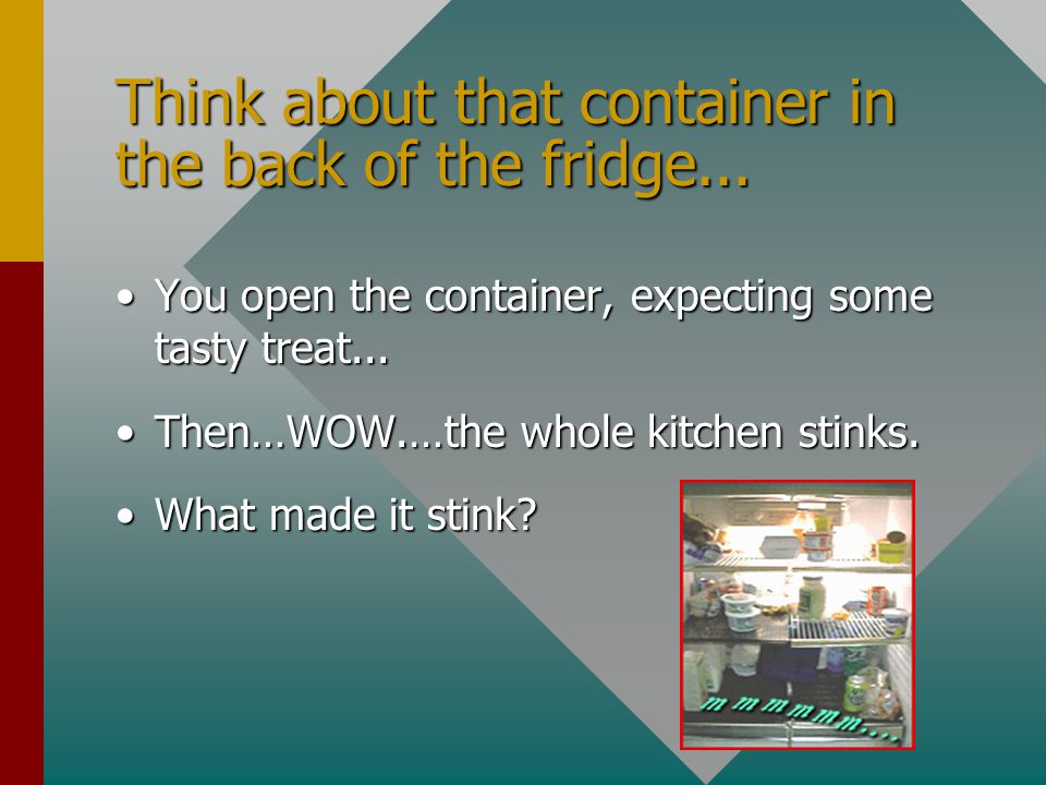 Think about that container in the back of the fridge... You open the container, expecting some tasty treat...You open the container, expecting some ta