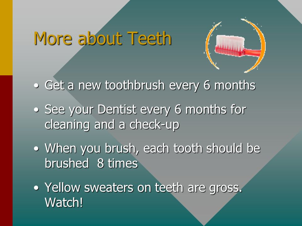 More about Teeth Get a new toothbrush every 6 monthsGet a new toothbrush every 6 months See your Dentist every 6 months for cleaning and a check-upSee