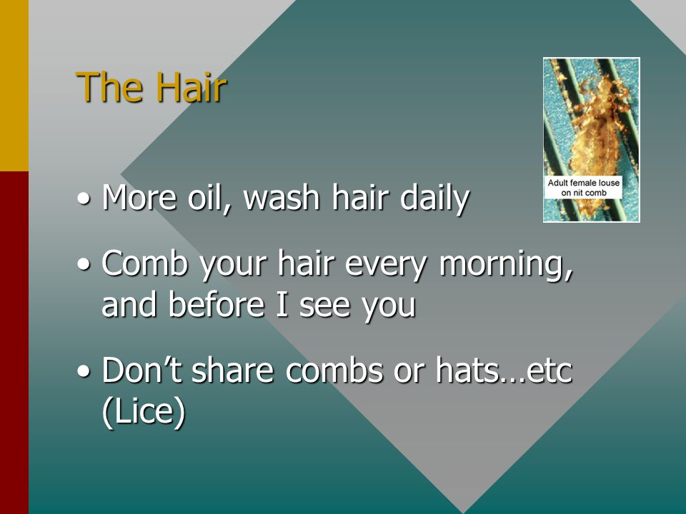 The Hair More oil, wash hair dailyMore oil, wash hair daily Comb your hair every morning, and before I see youComb your hair every morning, and before
