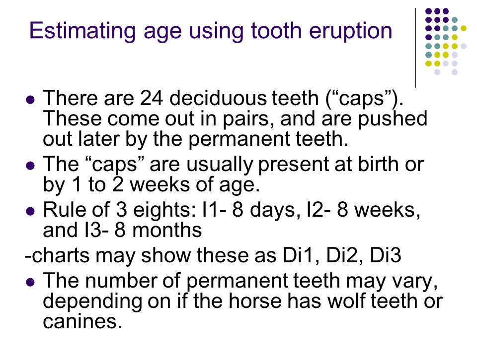 """Estimating age using tooth eruption There are 24 deciduous teeth (""""caps""""). These come out in pairs, and are pushed out later by the permanent teeth. T"""