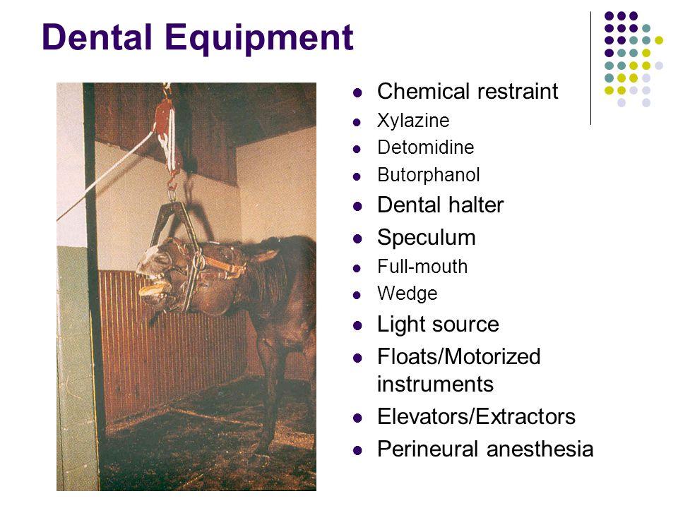 Dental Equipment Chemical restraint Xylazine Detomidine Butorphanol Dental halter Speculum Full-mouth Wedge Light source Floats/Motorized instruments