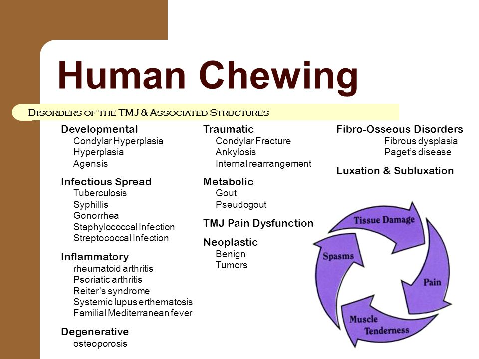Human Chewing Disorders of the TMJ & Associated Structures Developmental Condylar Hyperplasia Hyperplasia Agensis Infectious Spread Tuberculosis Syphi