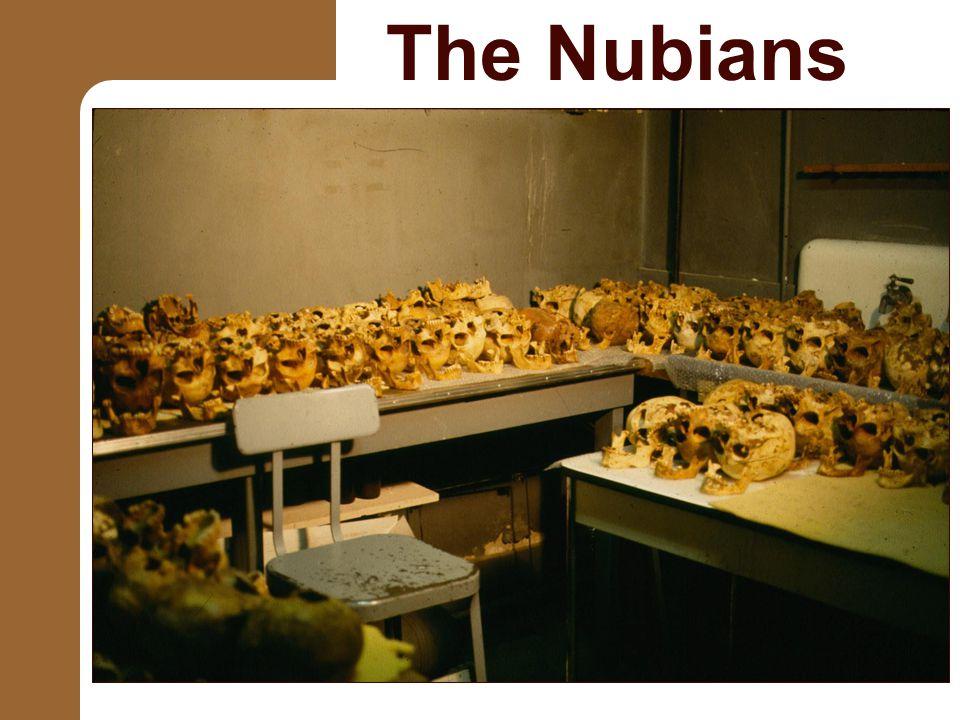The Nubians