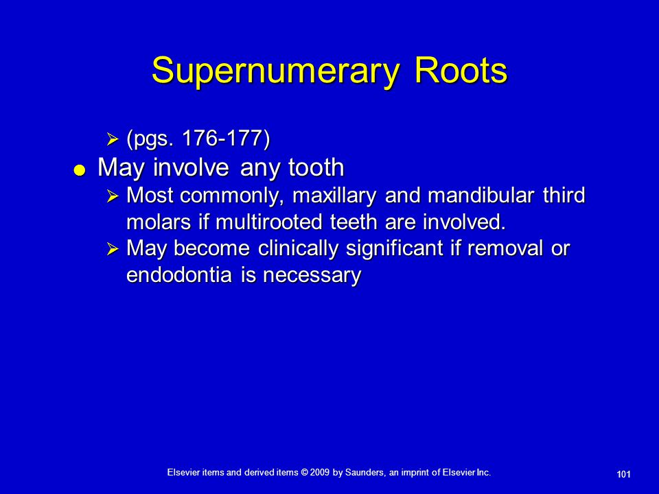 101 Elsevier items and derived items © 2009 by Saunders, an imprint of Elsevier Inc. Supernumerary Roots  (pgs. 176-177)  May involve any tooth  Mo