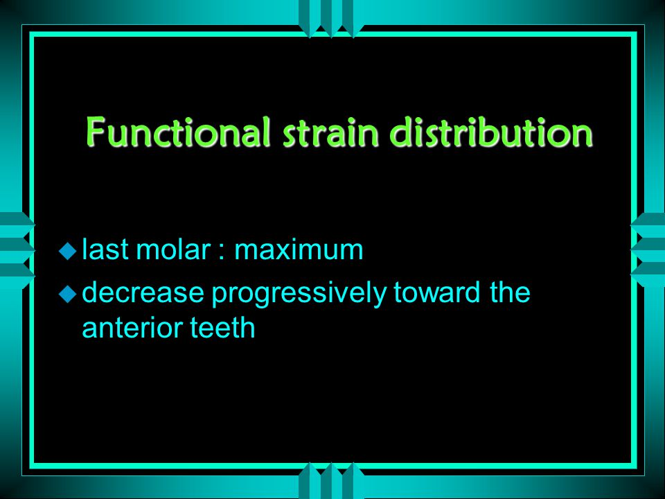 Functional strain distribution u last molar : maximum u decrease progressively toward the anterior teeth