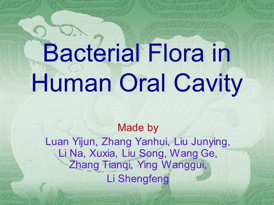 Bacterial Flora in Human Oral Cavity Made by Luan Yijun, Zhang Yanhui, Liu Junying, Li Na, Xuxia, Liu Song, Wang Ge, Zhang Tianqi, Ying Wanggui, Li Shengfeng