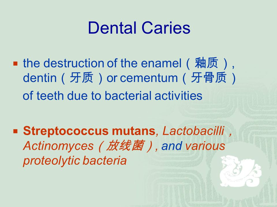 Dental Caries  the destruction of the enamel (釉质), dentin (牙质) or cementum (牙骨质) of teeth due to bacterial activities  Streptococcus mutans, Lactoba