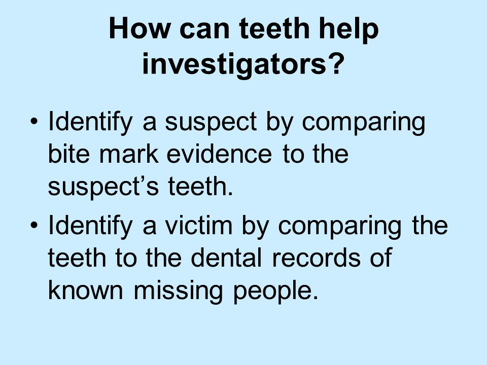 How can teeth help investigators? Identify a suspect by comparing bite mark evidence to the suspect's teeth. Identify a victim by comparing the teeth
