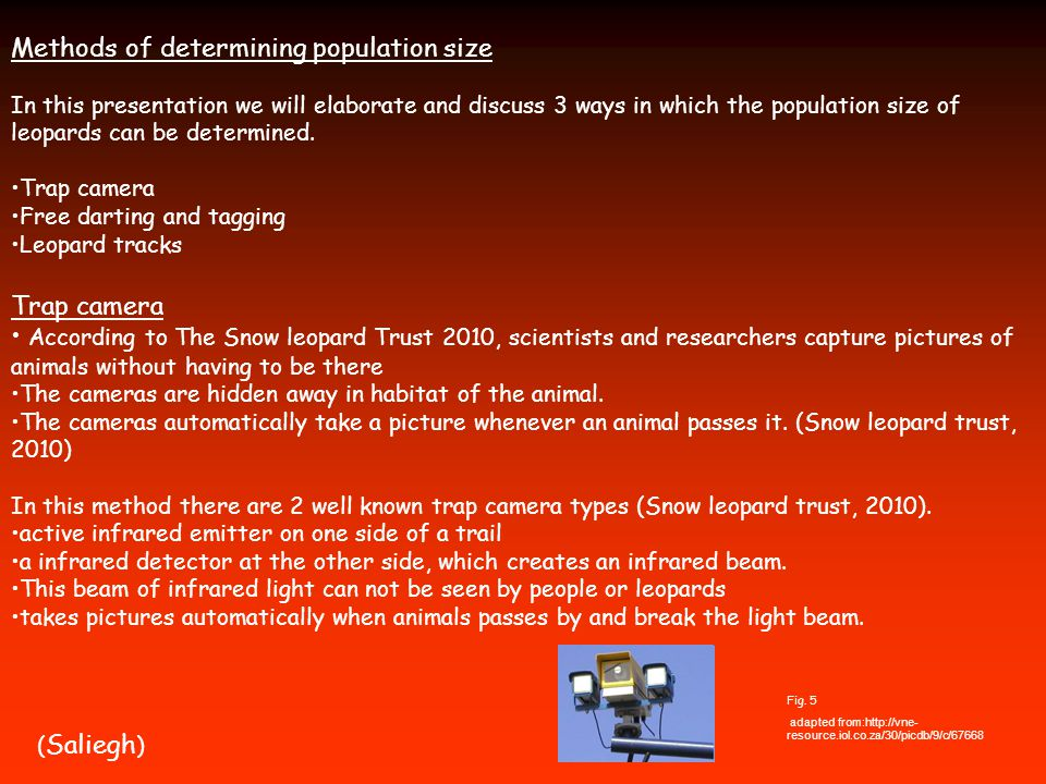 Methods of determining population size In this presentation we will elaborate and discuss 3 ways in which the population size of leopards can be determined.
