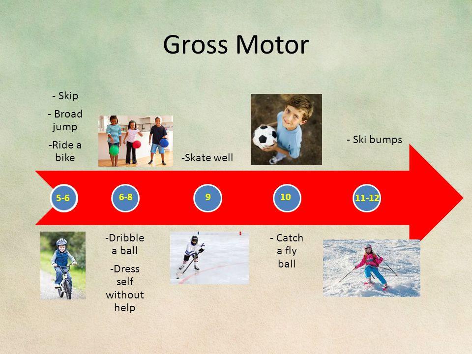 Gross Motor 5-6 6-8910 11-12
