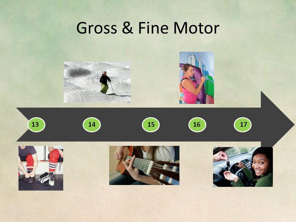 Gross & Fine Motor 13 14151617