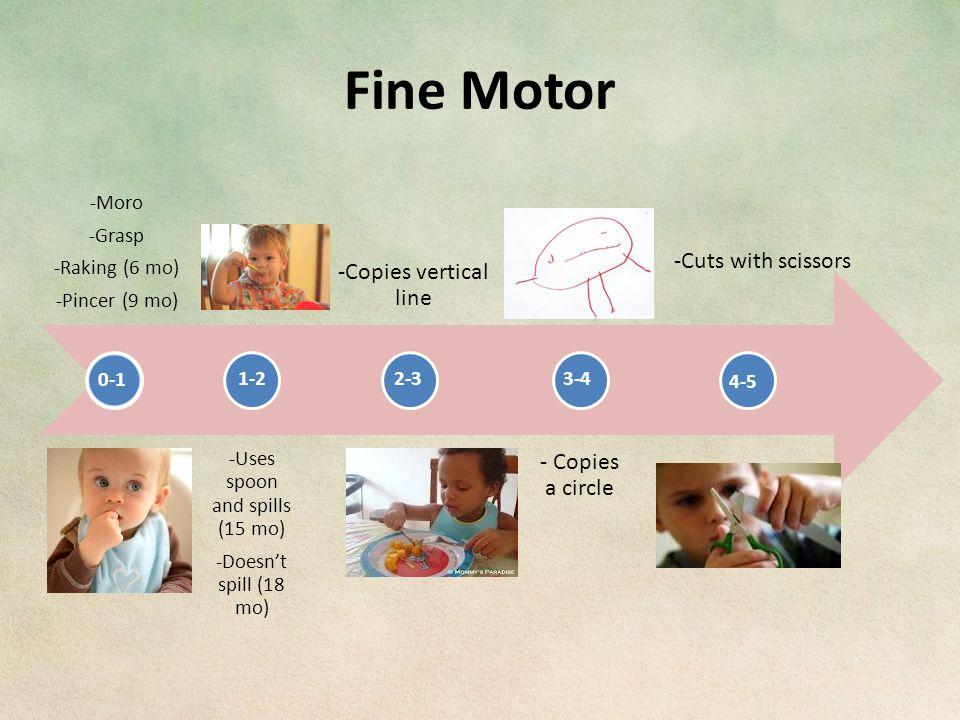 Fine Motor 0-1 1-22-33-4 4-5