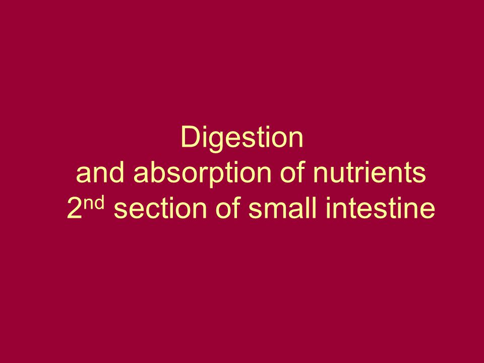 Digestion and absorption of nutrients 2 nd section of small intestine