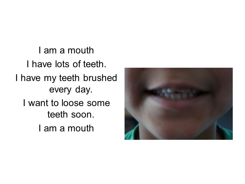 I have lots of teeth. I have my teeth brushed every day.