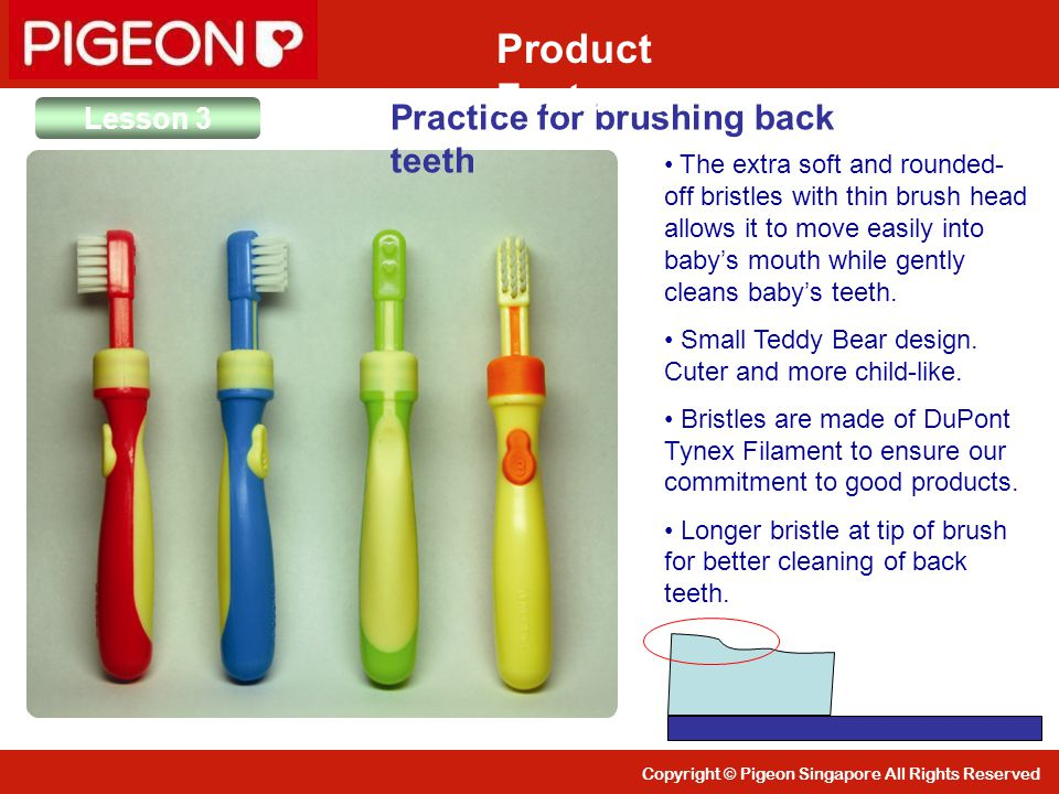 Copyright © Pigeon Singapore All Rights Reserved Lesson 3 Practice for brushing back teeth Product Features The extra soft and rounded- off bristles w