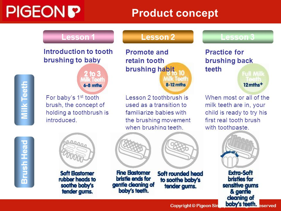 Copyright © Pigeon Singapore All Rights Reserved Lesson 1Lesson 3Lesson 2 For baby's 1 st tooth brush, the concept of holding a toothbrush is introduc