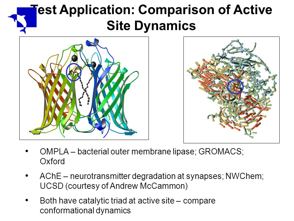 Test Application: Comparison of Active Site Dynamics OMPLA – bacterial outer membrane lipase; GROMACS; Oxford AChE – neurotransmitter degradation at synapses; NWChem; UCSD (courtesy of Andrew McCammon) Both have catalytic triad at active site – compare conformational dynamics