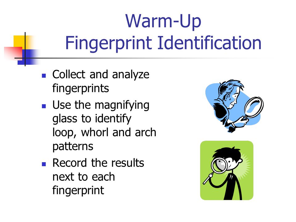 An activity in the Chromatography of Mixtures and Ink Identification