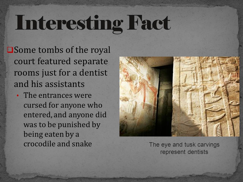  Some tombs of the royal court featured separate rooms just for a dentist and his assistants The entrances were cursed for anyone who entered, and anyone did was to be punished by being eaten by a crocodile and snake The eye and tusk carvings represent dentists