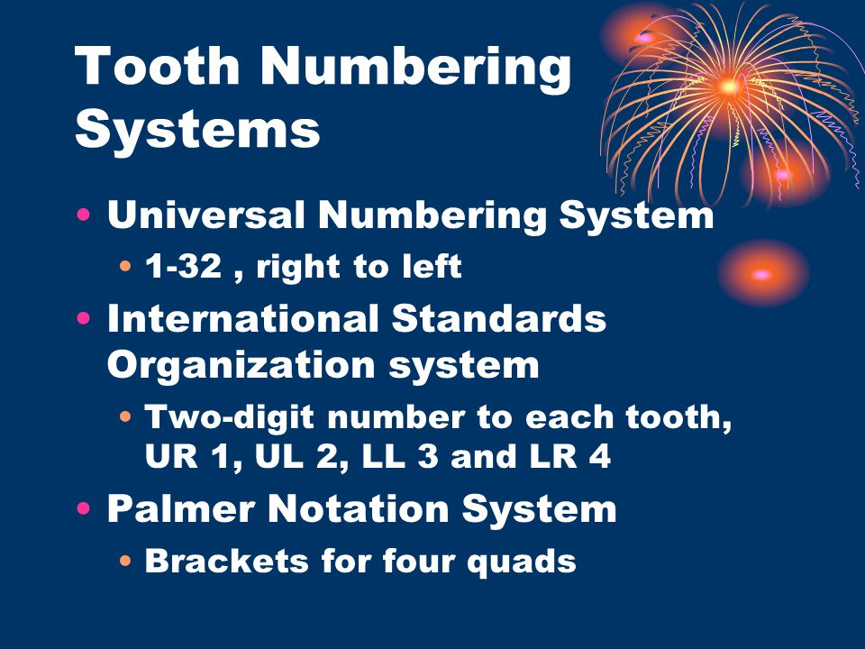 Tooth Numbering Systems Universal Numbering System 1-32, right to left International Standards Organization system Two-digit number to each tooth, UR
