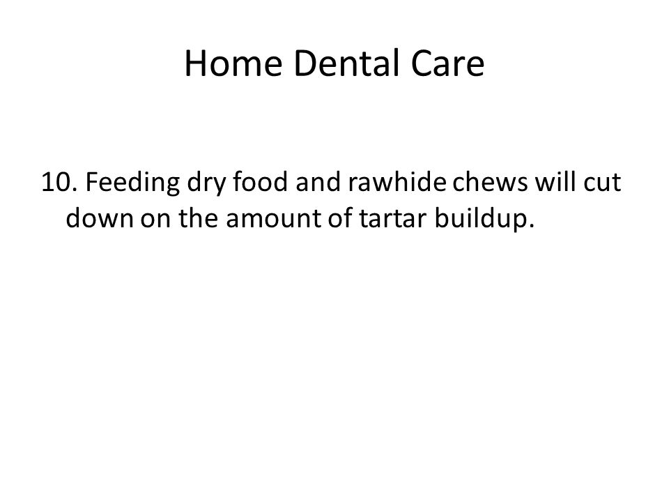 Home Dental Care 10. Feeding dry food and rawhide chews will cut down on the amount of tartar buildup.