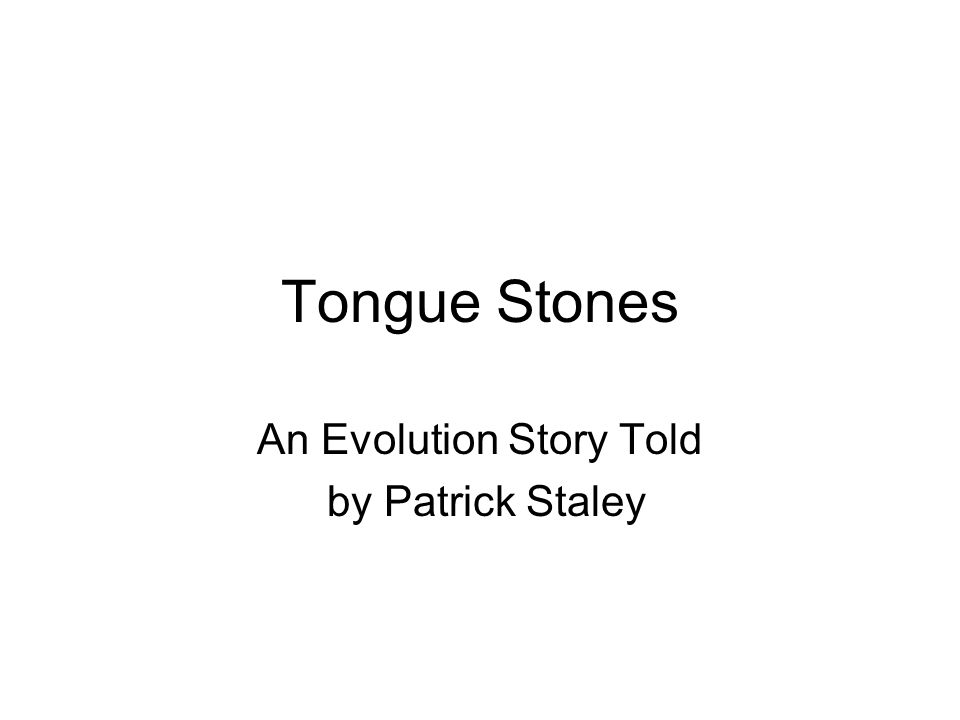 Tongue Stones An Evolution Story Told by Patrick Staley