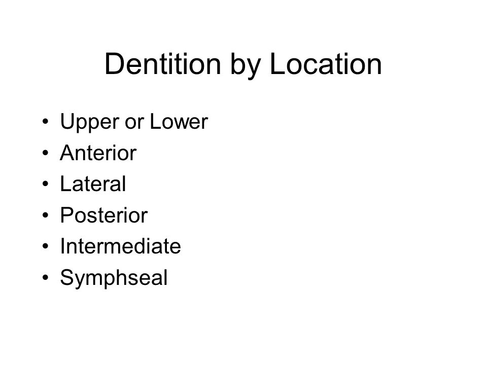Dentition by Location Upper or Lower Anterior Lateral Posterior Intermediate Symphseal