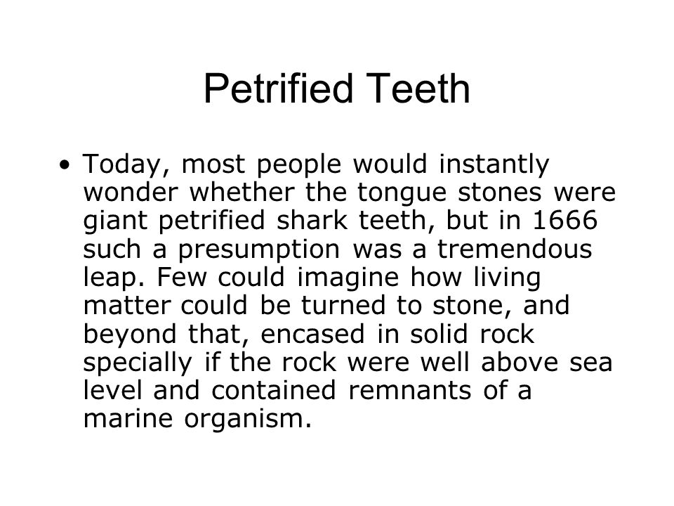 Petrified Teeth Today, most people would instantly wonder whether the tongue stones were giant petrified shark teeth, but in 1666 such a presumption w