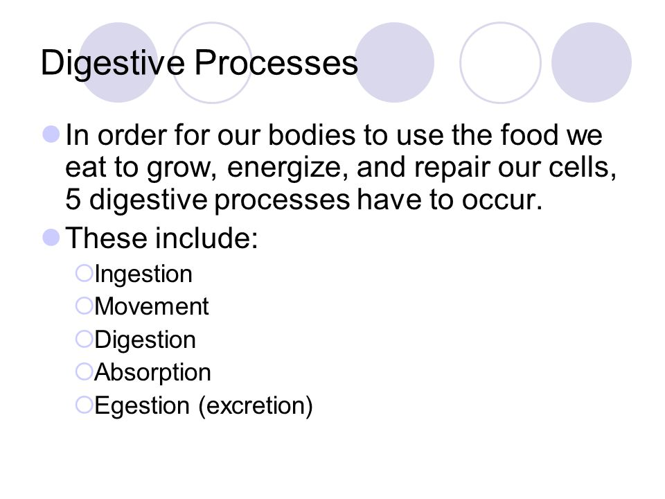 Digestive Processes In order for our bodies to use the food we eat to grow, energize, and repair our cells, 5 digestive processes have to occur. These