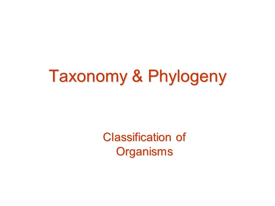 ClassificationClassification What characters are suitable for classification Systematics –Combination of taxonomy & phylogeny –Systematic approach to understanding evolutionary relationships among organisms