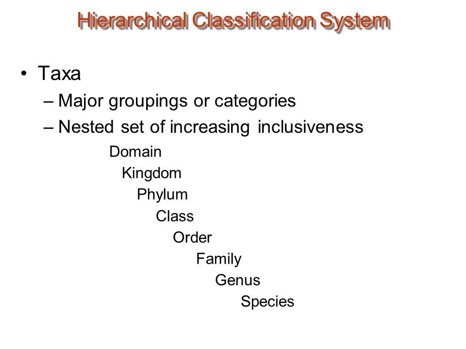 Taxonomic Catagorization