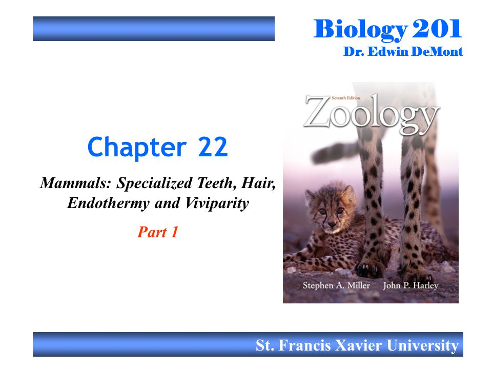 Biology 201 Dr. Edwin DeMont St. Francis Xavier University Chapter 22 Mammals: Specialized Teeth, Hair, Endothermy and Viviparity Part 1