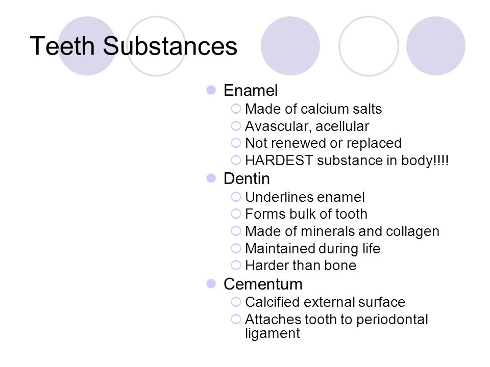 Teeth Substances Enamel  Made of calcium salts  Avascular, acellular  Not renewed or replaced  HARDEST substance in body!!!! Dentin  Underlines e