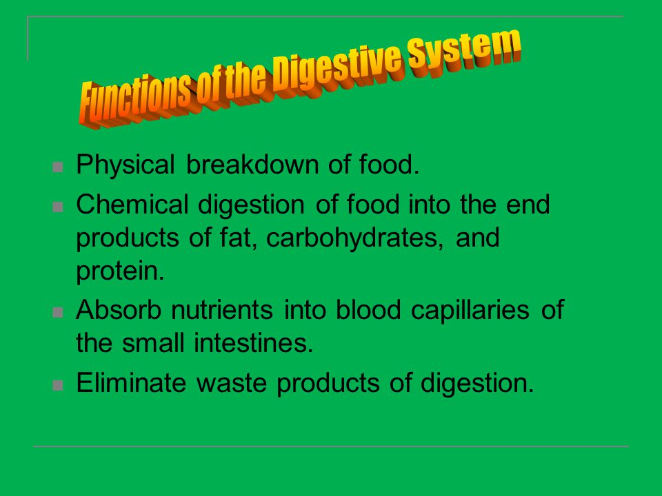 Physical breakdown of food. Chemical digestion of food into the end products of fat, carbohydrates, and protein. Absorb nutrients into blood capillari