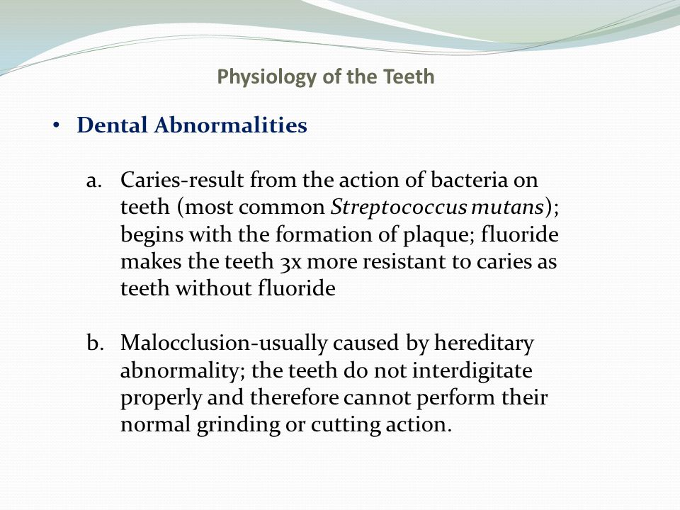 Physiology of the Teeth Dental Abnormalities a.Caries-result from the action of bacteria on teeth (most common Streptococcus mutans); begins with the