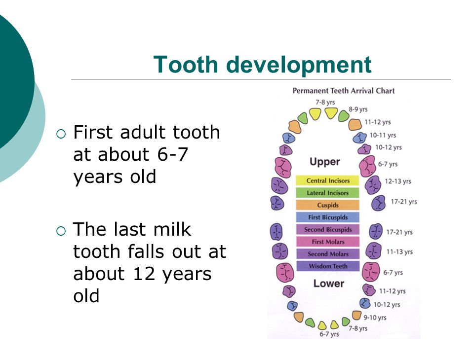 Tooth decay is preventable  Cleaning teeth  A tooth friendly approach to food and drink